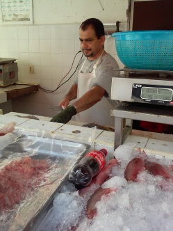 Mercado Del Mar La Cruz 3
